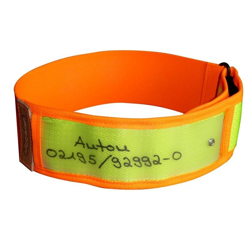 obroża odblaskowa dla psa niemieckiej firmy Niggeloh z adresem i telefonem, bezpieczeństwo o zmroku, obroża z identyfikatorem